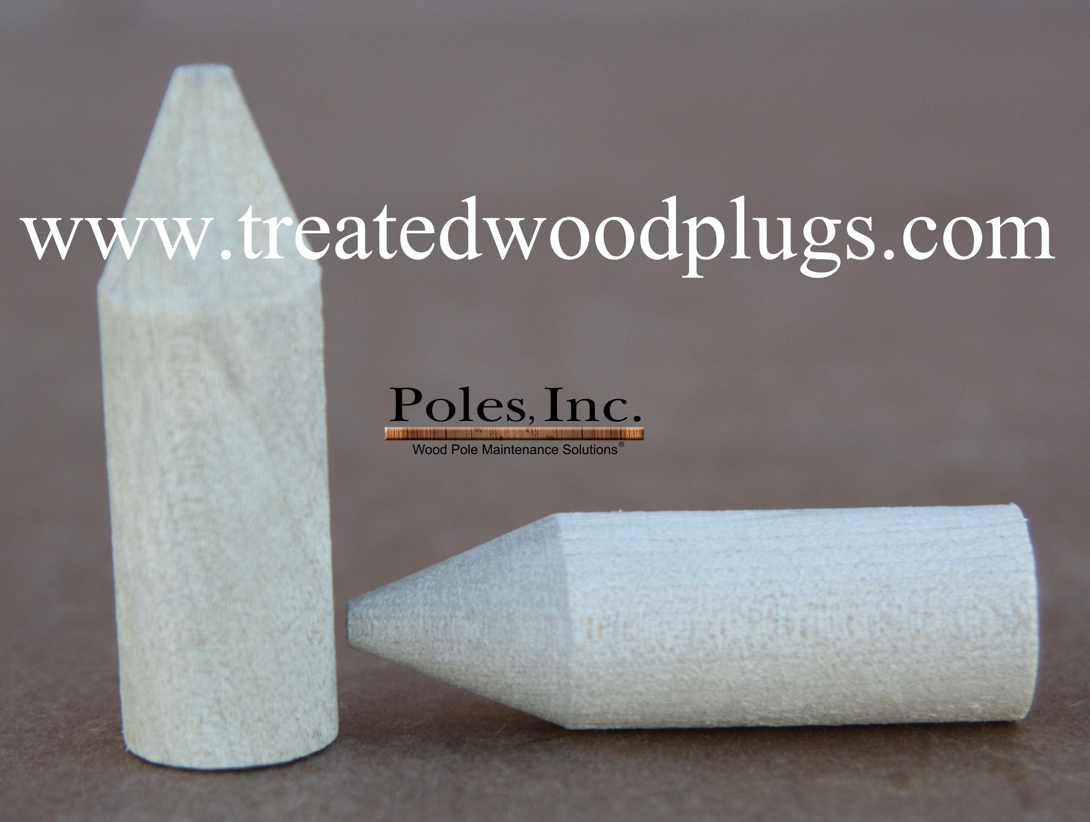 treatedwoodplugs.com